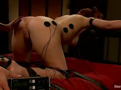 Doggystyle Bondage for Anal and Pussy Strapon Fucking for Brooklyn Lee