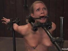 choked and made to ride a sybian